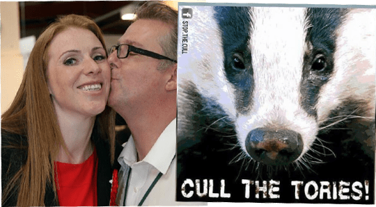 Mr Rayner's Alternative to Badger Cull