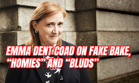"Emma Dent Coad on ""Fake Bake"", ""Homies"" and ""Bluds"""