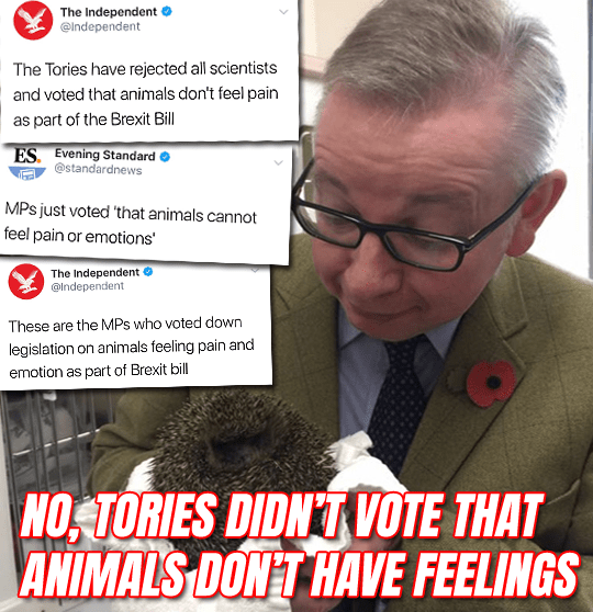 This Analysis Shows How Viral Fake Election News Stories: Viral Animal Sentience Fake News Story Seen By 2 Million