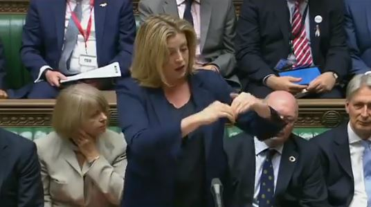 Penny's Sign Language at Despatch Box