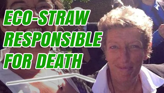 Image result for death by metal straw