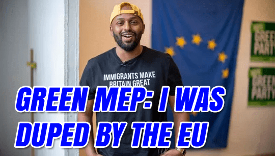magid-magid-duped-eu.png?w=540&ssl=1