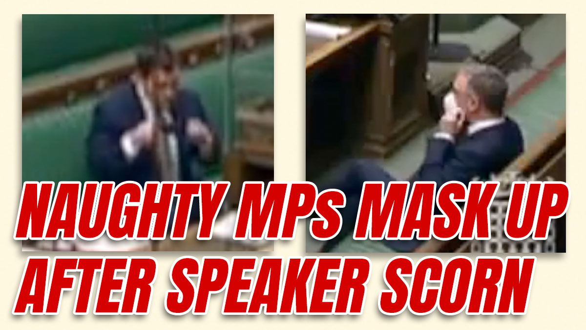 Sheepish MPs Mask-Up After Telling Off from Speaker