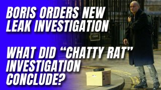 Shouldn't 'Chatty Rat' Leak Investigation Be Concluded Before Another Leak Investigation Commences?
