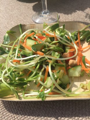 Sprout salad with cucumber and chickpeas