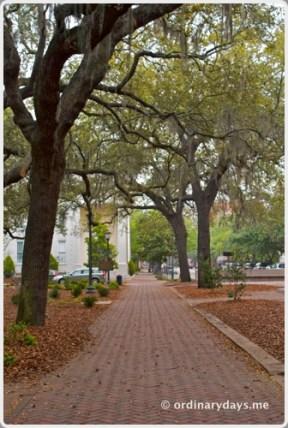 Savannah Street 2