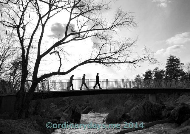 3 on a bridge