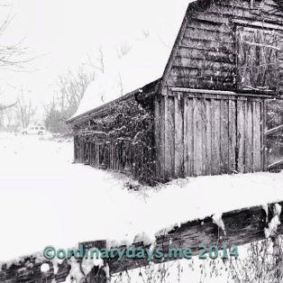 Snow on old barn