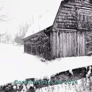 Snow on old barn