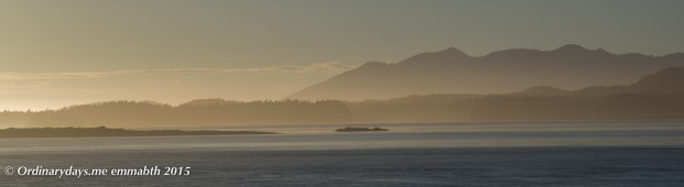 Tofino sunset 2