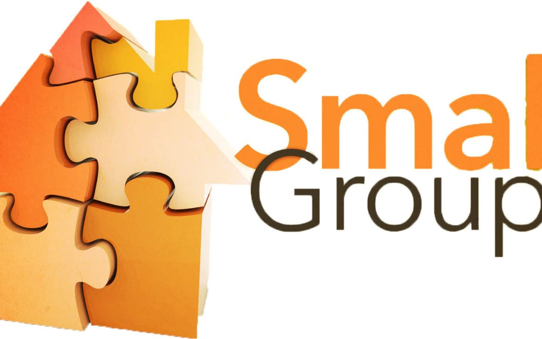 What is the Point of Small Groups?