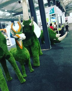 A gryno a grelephant and a gringbok at decorexsa grasshellip