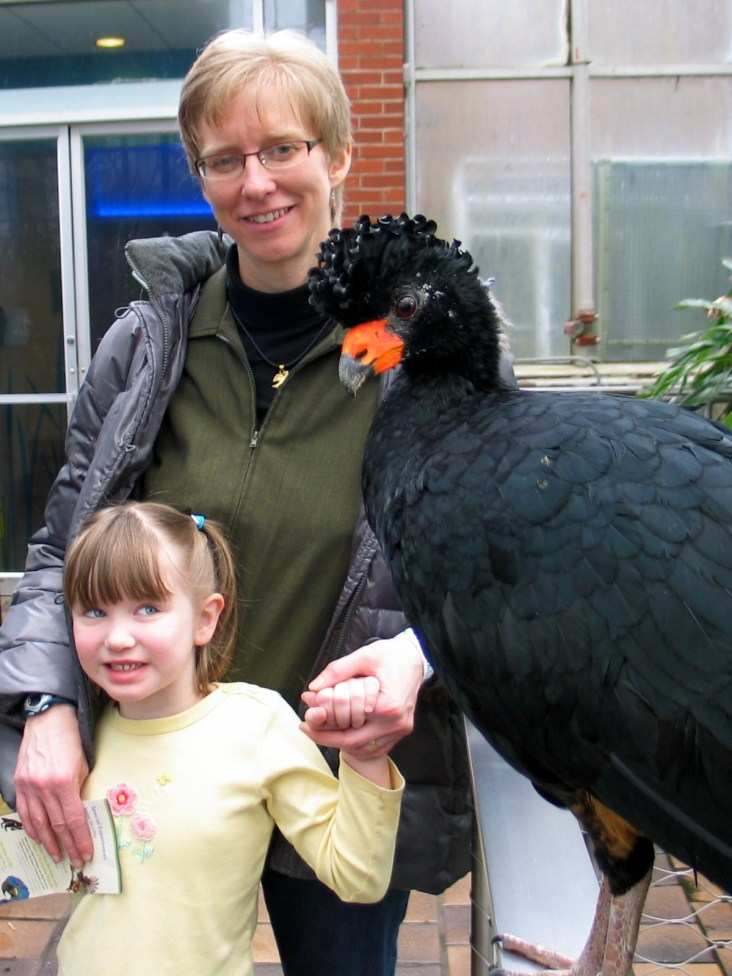 Wattled currasow with Youngest Daughter