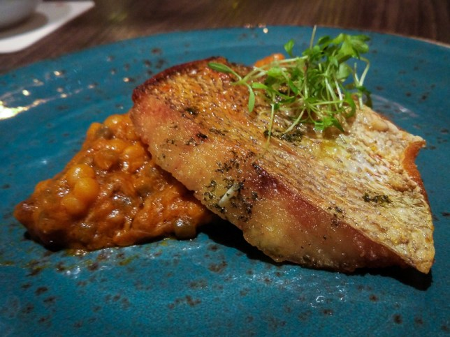 Red Snapper with Crab Cioppino and Fregola 2