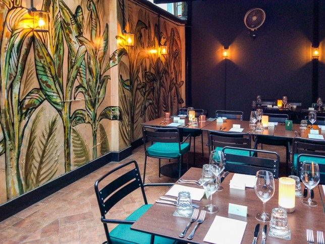 Amo Casual Italian Restaurant
