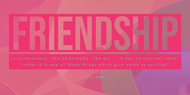 Friendship is unnecessary, like philosophy, like art.... It has no survival value; rather it is one of those things which give value to survival. - C.S. Lewis