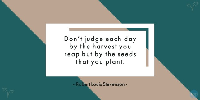 Don't judge each day by the harvest you reap but by the seeds that you plant. - Robert Louis Stevenson uote