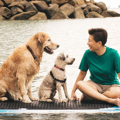 Cheerful Dogs Nee on Sentosa
