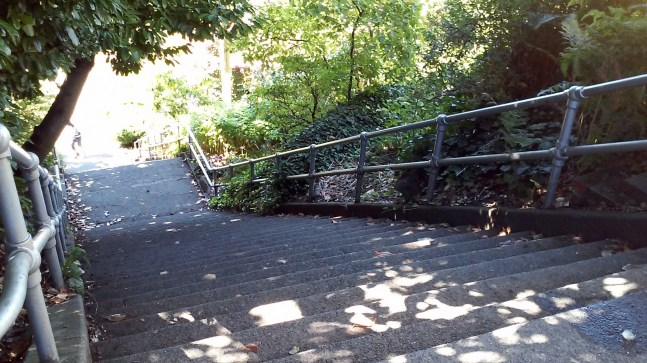 Stairs from Lake Union to 10th. Quite the climb!