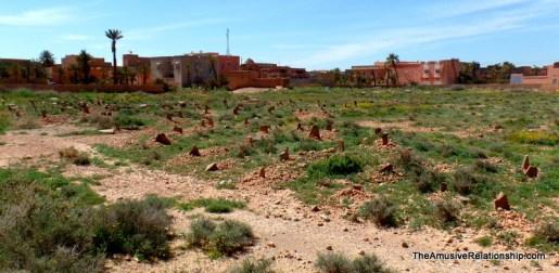 Desert Cemetery