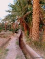 Irrigation canals