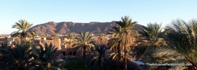 The palm grove with a view of distant mountains
