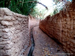 Irrigation canals are everywhere.
