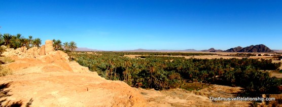 A view of lower Figuig and Algeria in the distance