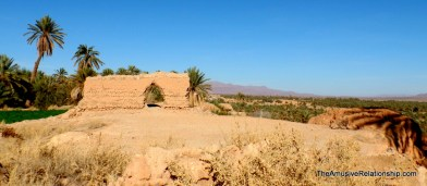 An old wall separating fields and Algeria in the background