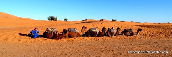 Our camels await us