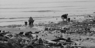 Digging for shellfish