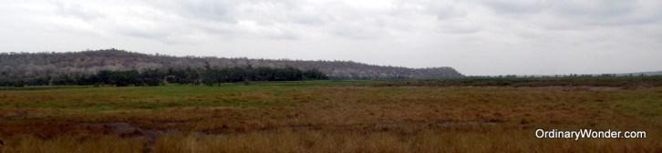 Flood plains