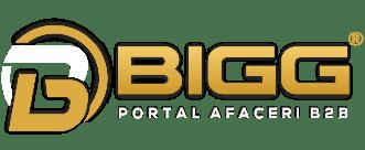 Bigg.ro – portalul tău pentru afaceri