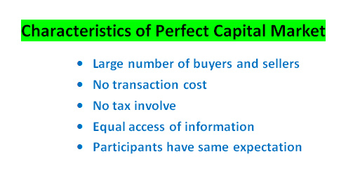 perfect capital market