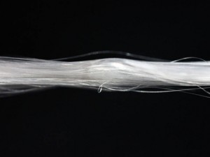 silk fiber production