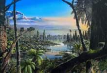 Incredible rainforests grew in Antarctica