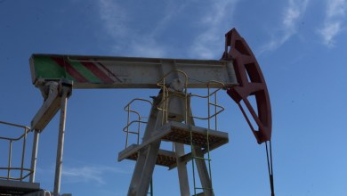 Photo of OPEC downgrades oil market recovery forecast