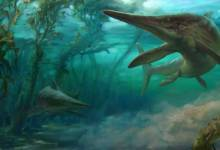 Photo of In North America, the remains of a pregnant ichthyosaur
