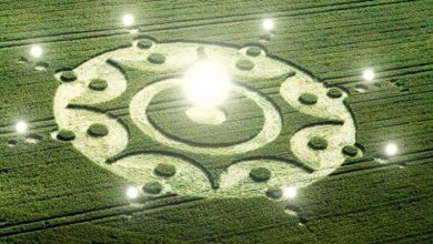 Photo of UFO draws crop circles (VIDEO)