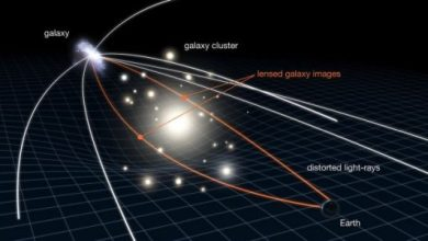 Photo of Deformed starlight may indicate dark matter in the Milky Way