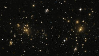Photo of Giant radio bridge discovered connecting two galaxy clusters