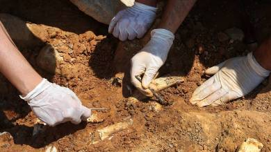 Photo of Traces of the oldest cremation found in Israel