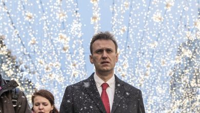 Photo of who poisoned Alexei Navalny?