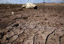 Global catastrophic drought predicted