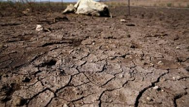 Photo of Global catastrophic drought predicted