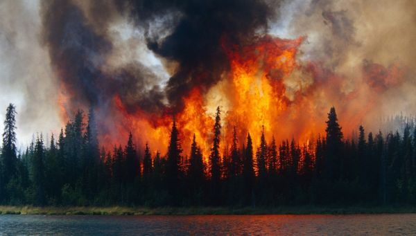 The Arctic began to burn in a new way What does it mean
