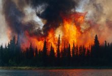 Photo of The Arctic began to burn in a new way – What does it mean