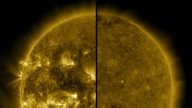Photo of New cycle of solar activity has begun