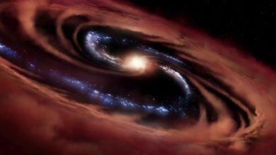 Stars are born near a killer black hole