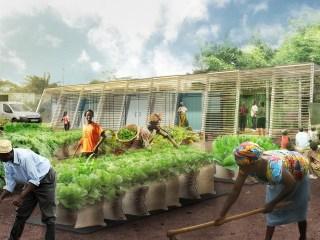 Lagos Farm